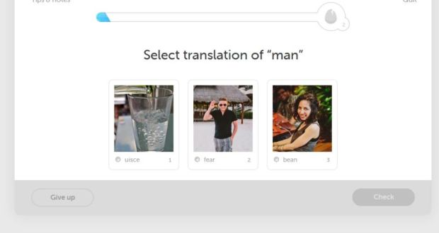 Duolingo mobile app helps increase Gaeilge learning