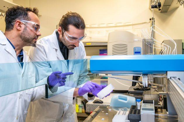 two man making medicine inside laboratory
